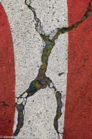 Giacometti in memoriam